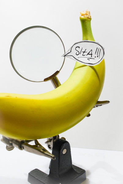 Banan - siła